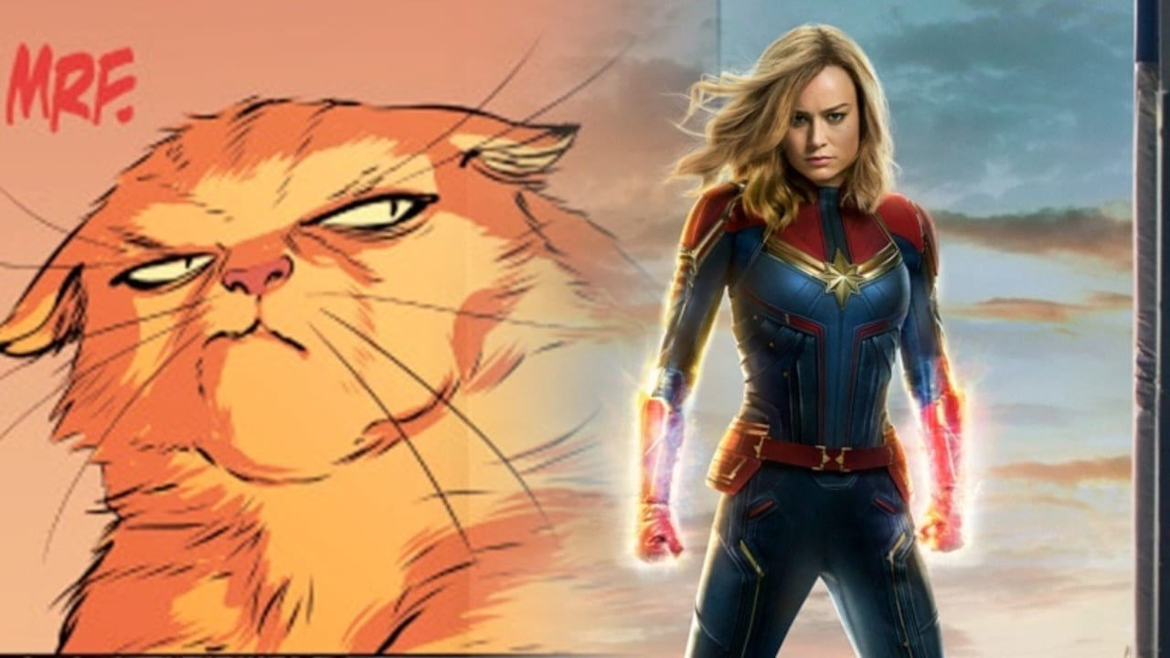 captain marvel and goose the cat