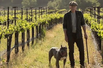Star Trek: Picard will begin with a retired Picard. Pic courtesy: variety.com