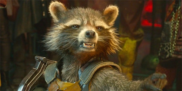 Will Rocket really die in Gotg 3? Pic courtesy: daily cardinal.com