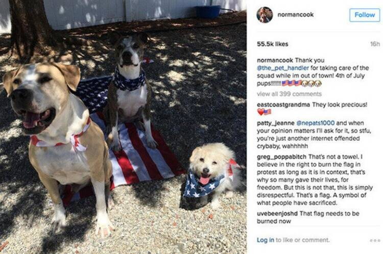 Kaley Cuoco Dogs and American Flag