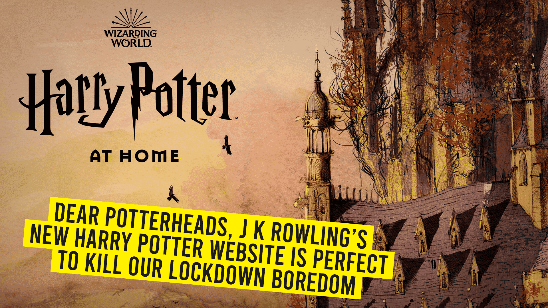 The all new Harry Potter website is all you need to cure your Quarantine Blues