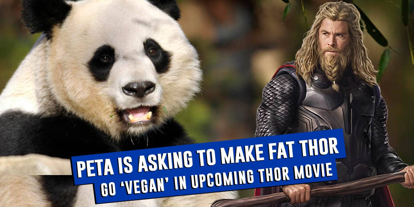 PETA Wants Taika Waititi To Make Fat Thor Go Vegan In Thor 4