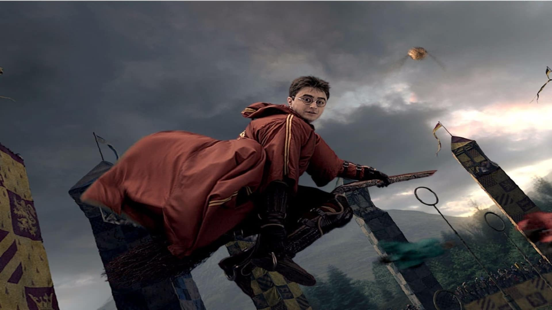 The fighter Harry in Quidditch