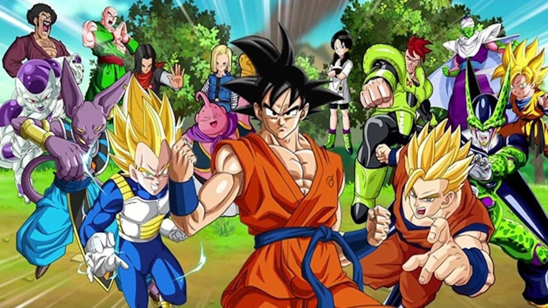 The Dragon Ball Super Characters