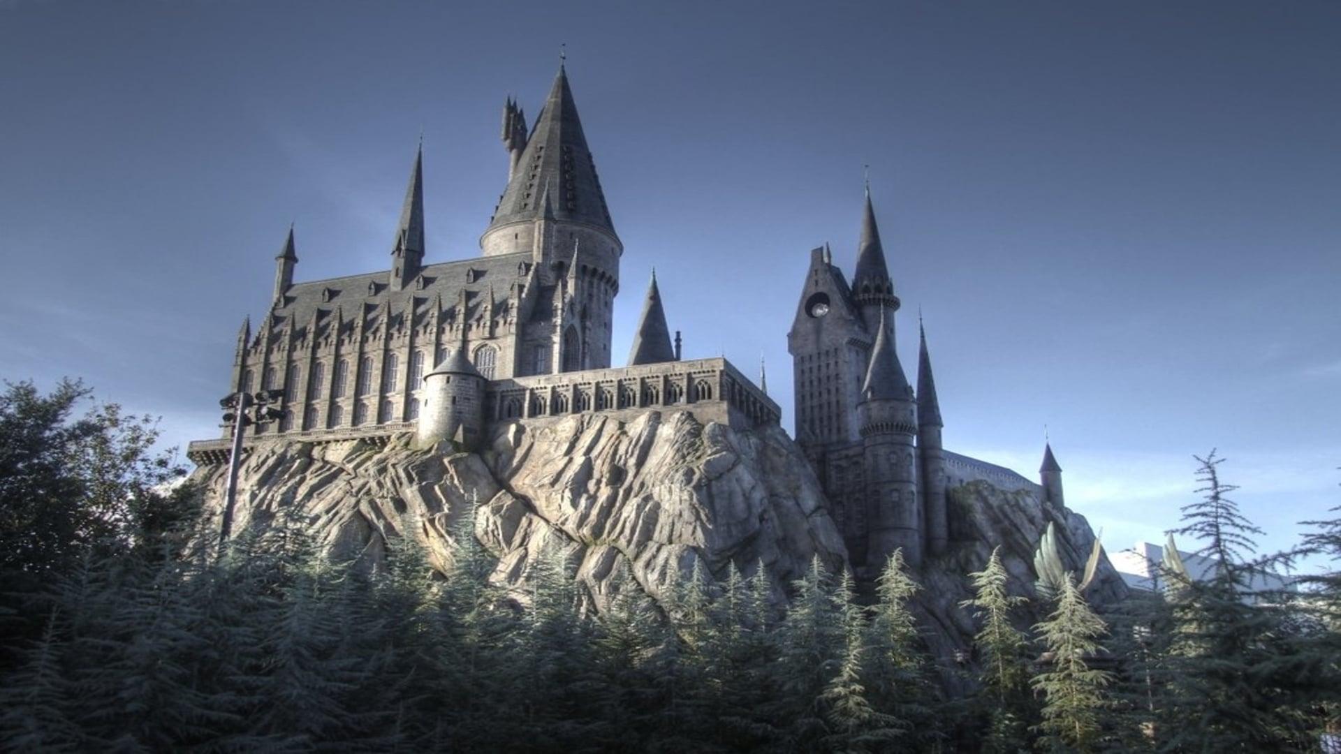 Hogwarts school - A symbol of danger