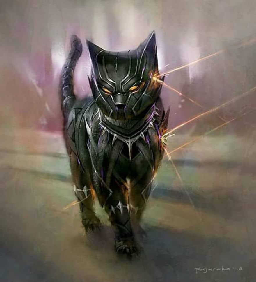 Cats as Black Pawwnther